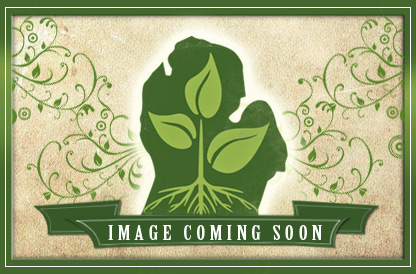 12&quot;x12&quot; Square White Pot, 12&quot; Tall, 24 per case